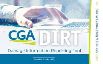 New Report Released – 2019 DIRT Report